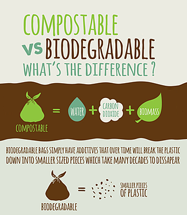 Infographic that shows difference of biodegradable versus compostable plastics