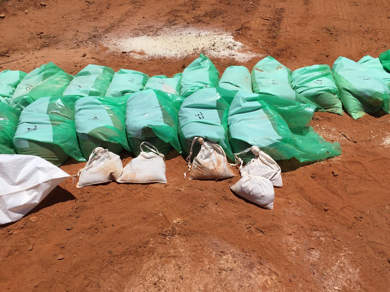 Green Bags in Field