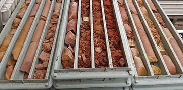 core-trays